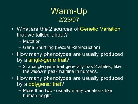 Warm-Up 2/23/07 What are the 2 sources of Genetic Variation that we talked about? –Mutation –Gene Shuffling (Sexual Reproduction) How many phenotypes are.