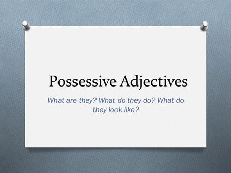 Possessive Adjectives What are they? What do they do? What do they look like?