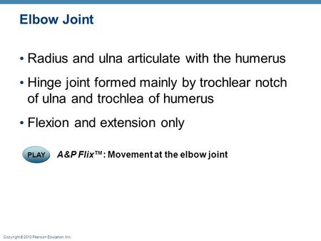 Copyright © 2010 Pearson Education, Inc. Elbow Joint Radius and ulna articulate with the humerus Hinge joint formed mainly by trochlear notch of ulna and.