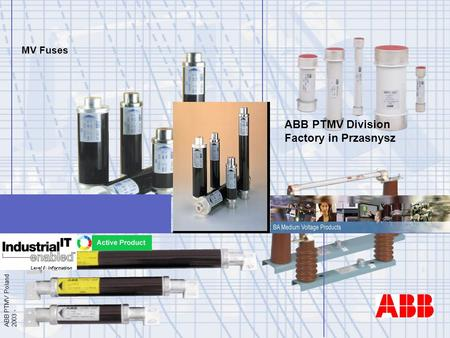 Fuses in ABB - General Presentation