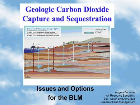 1 Issues and Options for the BLM Geologic Carbon Dioxide Capture and Sequestration Angela Zahniser Air Resource Specialist, Soil, Water, and Air Group.