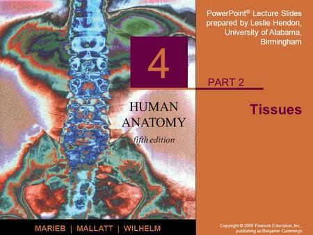 PowerPoint ® Lecture Slides prepared by Leslie Hendon, University of Alabama, Birmingham HUMAN ANATOMY fifth edition MARIEB | MALLATT | WILHELM 4 Copyright.