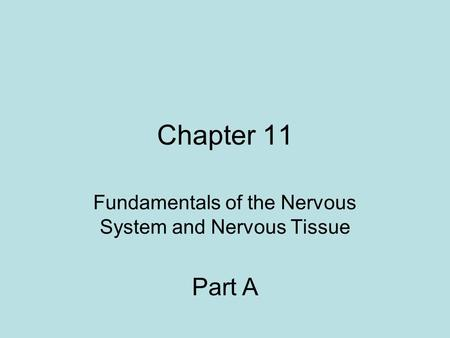 Chapter 11 Fundamentals of the Nervous System and Nervous Tissue Part A.