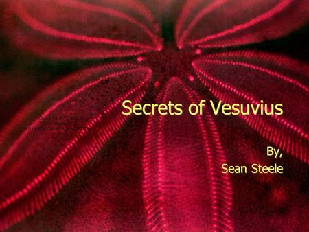 Secrets of Vesuvius By, Sean Steele By, Sean Steele.