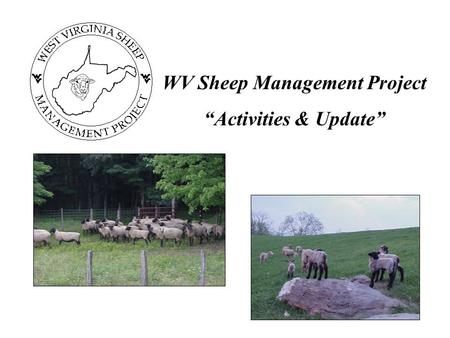 "WV Sheep Management Project ""Activities & Update""."