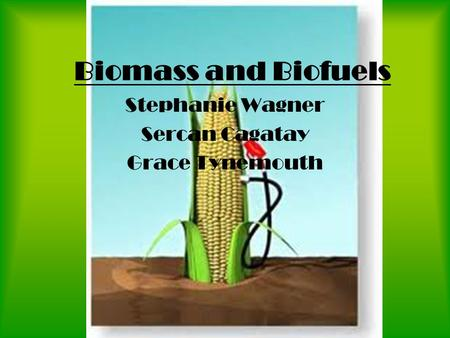 Biomass and Biofuels Stephanie Wagner Sercan Cagatay Grace Tynemouth.