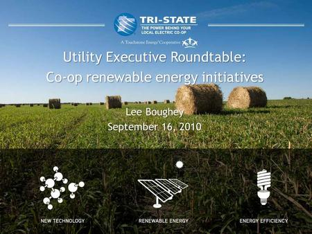 Utility Executive Roundtable: Co-op renewable energy initiatives Lee Boughey September 16, 2010.