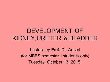 DEVELOPMENT OF KIDNEY,URETER & BLADDER