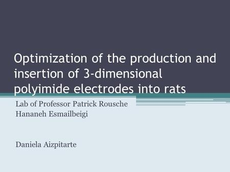 Optimization of the production and insertion of 3-dimensional polyimide electrodes into rats Lab of Professor Patrick Rousche Hananeh Esmailbeigi Daniela.