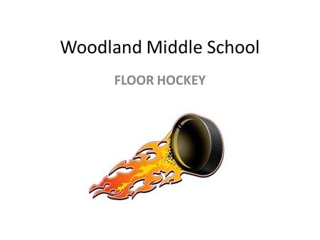 Woodland Middle School FLOOR HOCKEY. POSTIONSSKILLS PASSING PUCK PROTECTION SHOOTING STICK HANDLING TEAM WORK.