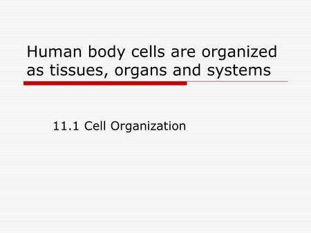 Human body cells are organized as tissues, organs and systems 11.1 Cell Organization.