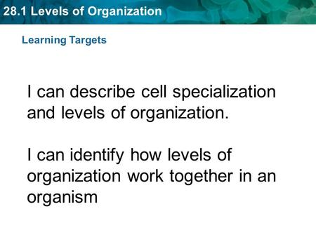 Learning Targets I can describe cell specialization and levels of organization. I can identify how levels of organization work together in an organism.
