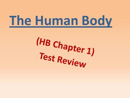 The Human Body (HB Chapter 1) Test Review. Directs the cell's activities and holds information that controls a cell's function. nucleus.