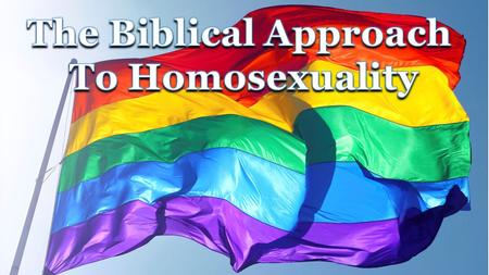 What the Bible Says and Doesn't Say about Homosexuality  24 page booklet that can be downloaded from the Soulforce website  Most popular item.
