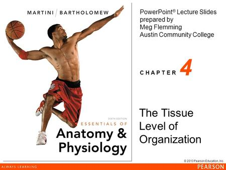 © 2013 Pearson Education, Inc. <strong>PowerPoint</strong> ® Lecture Slides prepared by Meg Flemming Austin Community College C H A P T E R 4 The Tissue Level of Organization.