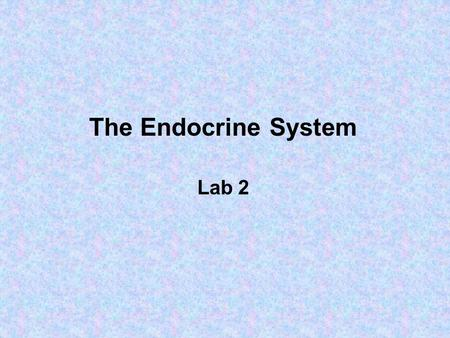 The Endocrine System Lab 2. A gland is one or more cells that makes and secretes an aqueous fluid Classified by: 1.Site of product release – endocrine.