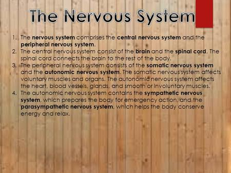 1.The nervous system comprises the central nervous system and the peripheral nervous system. 2.The central nervous system consist of the brain and the.