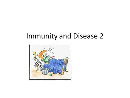 Immunity and Disease 2. Cytotoic T Helper T- (stimulate B cell action)