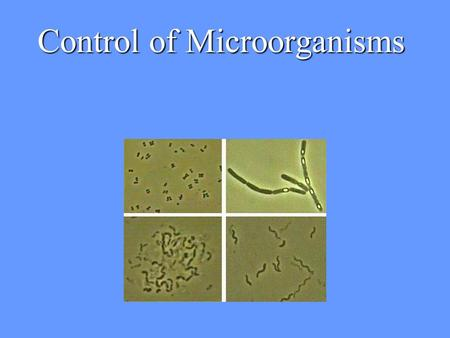 Control of Microorganisms Control of Microbial Growth Effected in two basic ways: 1.By Killing Microorganisms 2.By inhibiting the Growth of Microorganisms.