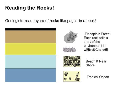 Reading the Rocks! Geologists read layers of rocks like pages in a book! Each rock tells a story of the environment in which it formed! Tropical Ocean.