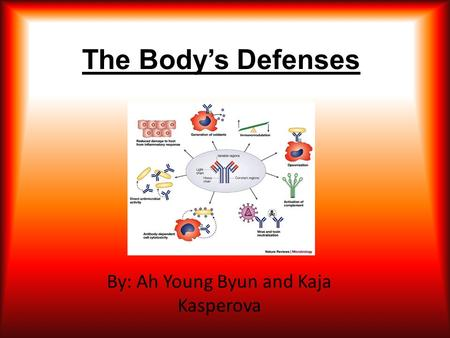 The Body's Defenses By: Ah Young Byun and Kaja Kasperova.