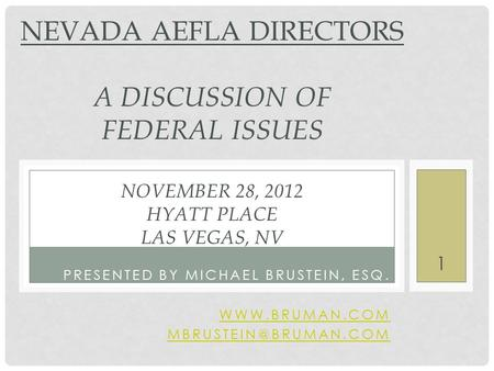 PRESENTED BY MICHAEL BRUSTEIN, ESQ.  NEVADA AEFLA DIRECTORS A DISCUSSION OF FEDERAL ISSUES NOVEMBER 28, 2012 HYATT PLACE.