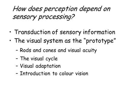 "How does perception depend on sensory processing? Transduction of sensory information The visual system as the ""prototype"" –Rods and cones and visual acuity."