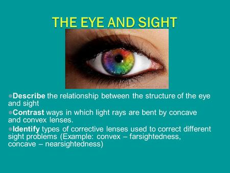 The Eye and Sight Describe the relationship between the structure of the eye and sight Contrast ways in which light rays are bent by concave and convex.