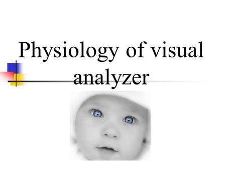 Physiology of visual analyzer. The eyes mediate sight Function Function Sensory organ for sight Sensory organ for sight Detects light and converts it.