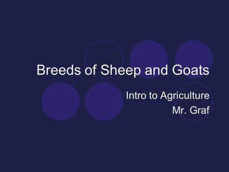 Breeds of Sheep and Goats Intro to Agriculture Mr. Graf.