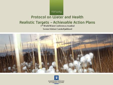 Protocol on Water and Health Realistic Targets – Achievable Action Plans 5 th World Water Conference, Istanbul Senior Adviser Carola Bjørklund.
