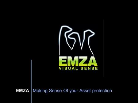 EMZA Making Sense Of your Asset protection. Emza Visual Sense WiseEye™ New Outdoor Intrusion Detection System 2009.