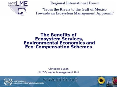 The Benefits of Ecosystem Services, Environmental Economics and Eco-Compensation Schemes Christian Susan UNIDO Water Management Unit.