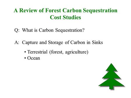 A Review of Forest Carbon Sequestration Cost Studies Q: What is Carbon Sequestration? A: Capture and Storage of Carbon in Sinks Terrestrial (forest, agriculture)