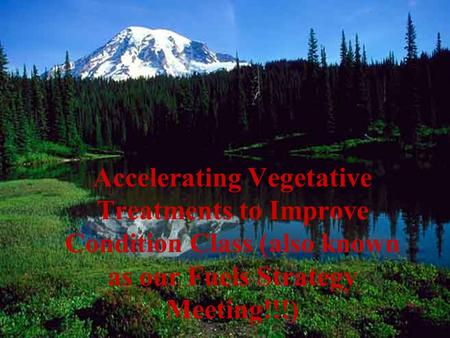 Accelerating Vegetative Treatments to Improve Condition Class (also known as our Fuels Strategy Meeting!!!)