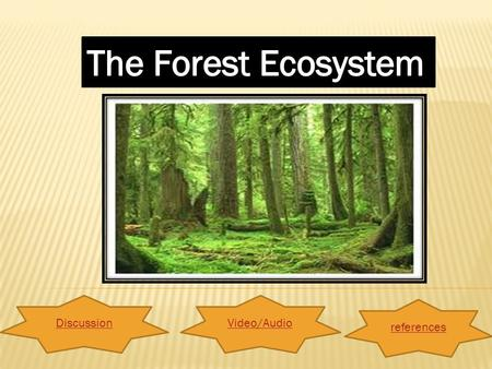 DiscussionVideo/Audio references. What is forest ecosystem? Click HERE for the definitionHERE And what forest ecosystem all about. Click HERE for the.
