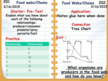 What organisms are producers in the food web and how do you know? Starter: Pre-Test Explain what you know about each of the following relationships: producer/consumer.