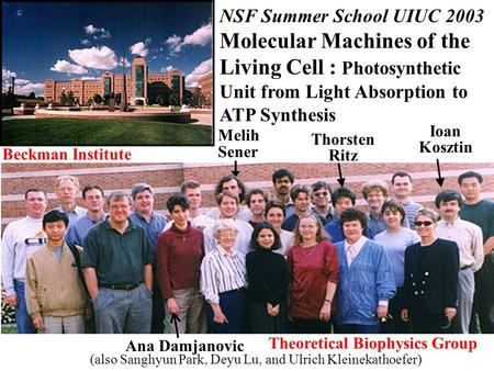 NSF Summer School UIUC 2003 Molecular Machines of the Living Cell : Photosynthetic Unit from Light Absorption to ATP Synthesis Melih Sener Thorsten Ritz.
