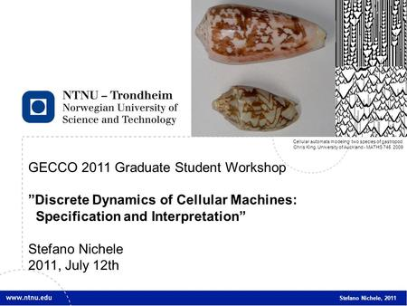 "1 GECCO 2011 Graduate Student Workshop ""Discrete Dynamics of Cellular Machines: Specification and Interpretation"" Stefano Nichele 2011, July 12th Stefano."