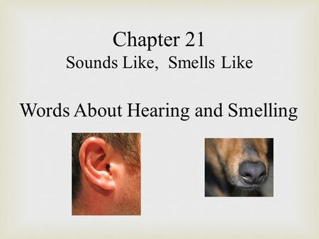 Chapter 21 Sounds Like, Smells Like Words About Hearing and Smelling.