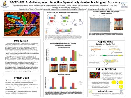 BACTO-ART A Multicomponent Inducible Expression System for Teaching and Discovery Project Goals To create a multicomponent, inducible expression system.