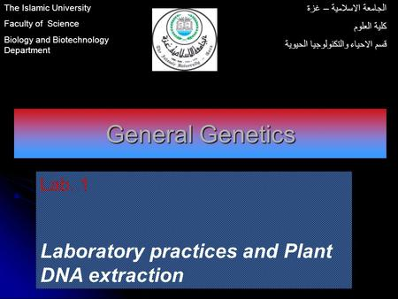 General Genetics Lab. 1 Laboratory practices and Plant DNA extraction The Islamic University Faculty of Science Biology and Biotechnology Department الجامعة.