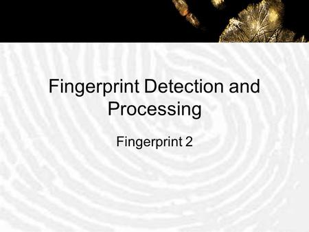 Fingerprint Detection and Processing Fingerprint 2.