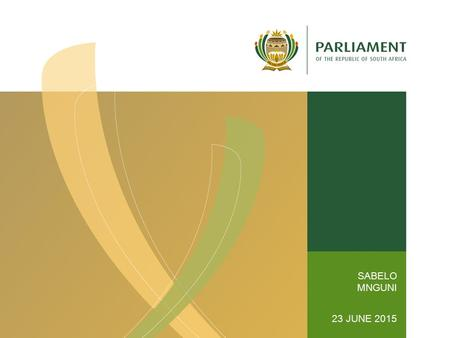 SABELO MNGUNI 23 JUNE 2015. Committees Section OVERVIEW OF HOUSING POLICY AND PROGRAMMES Sabelo Mnguni.