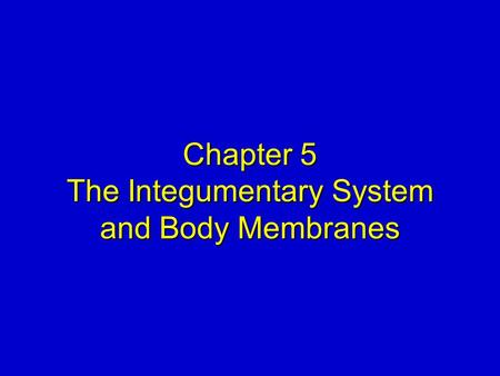 Chapter 5 The Integumentary System and Body Membranes