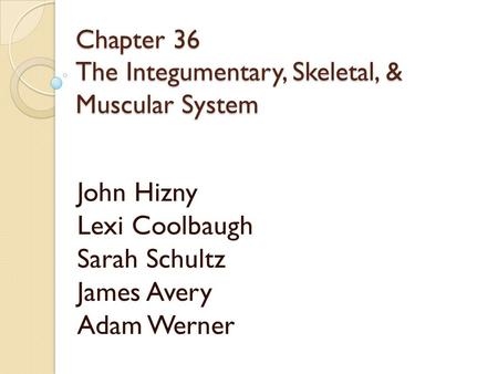 Chapter 36 The Integumentary, Skeletal, & Muscular System John Hizny Lexi Coolbaugh Sarah Schultz James Avery Adam Werner.