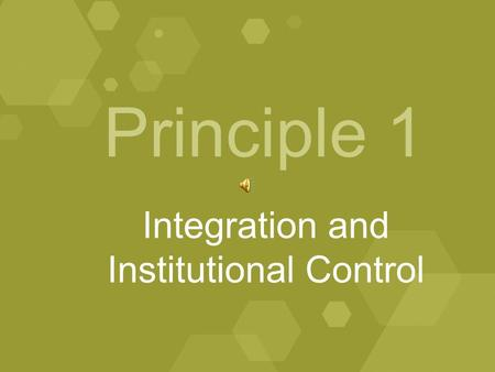Principle 1 Integration and Institutional Control.