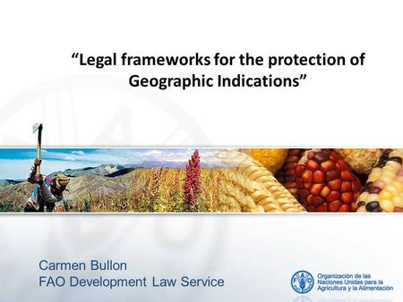 """Legal frameworks for the protection of Geographic Indications"" Carmen Bullon FAO Development Law Service."