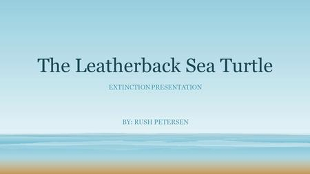 The Leatherback Sea Turtle EXTINCTION PRESENTATION BY: RUSH PETERSEN.