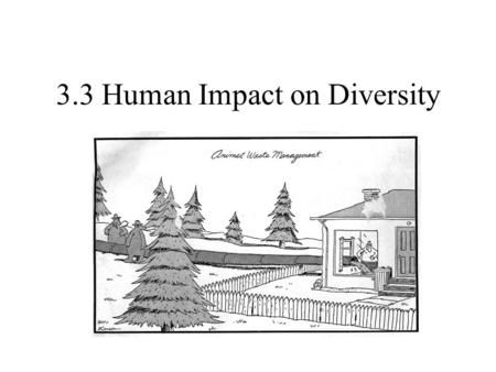 3.3 Human Impact on Diversity. What is an endangered species? We are currently in a period of mass extinctions – 1.5 million living species are endangered.